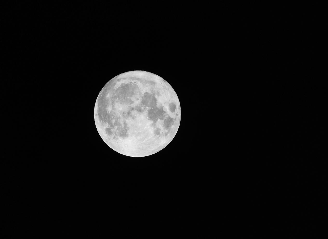 Fullmåne 1L shv DSC_1768